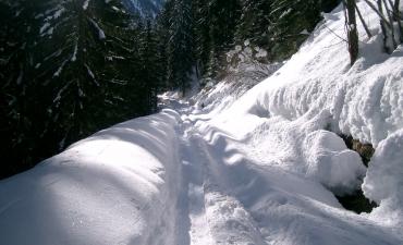 Val di Sole inverno_6